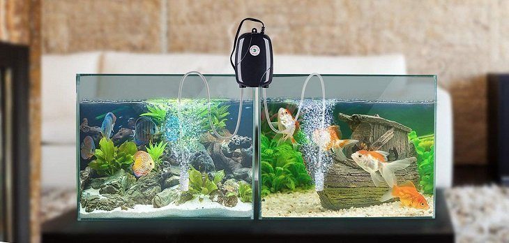 Best Aquarium Air Pump