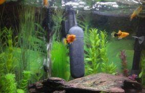 Best UV Sterilizer Aquarium