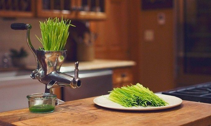 How to Buy the Best Wheatgrass Juicer
