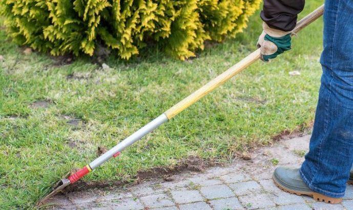 Best Manual Lawn Edger