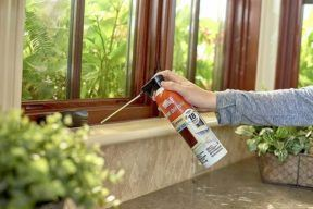 Best Bug Spray For Home