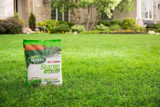 Best Lawn Fertilizer