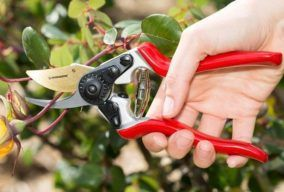 Best Pruning Shear