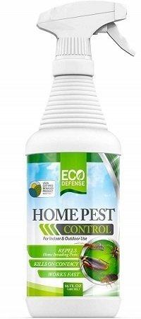 Eco Defense Home Pest Control