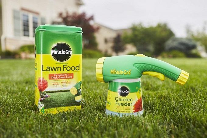 How to Buy the Best Lawn Fertilizer
