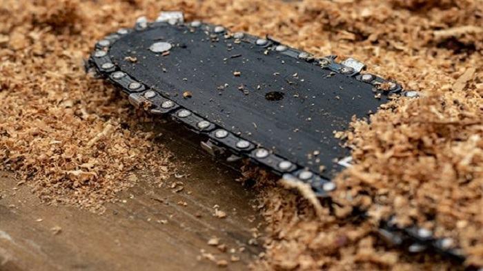 Best Chainsaw Bar