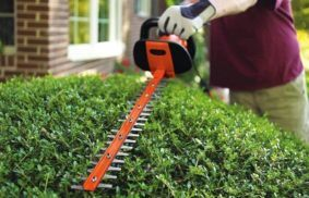 Best Electric Hedge Trimmer