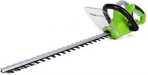 Greenworks 2200102