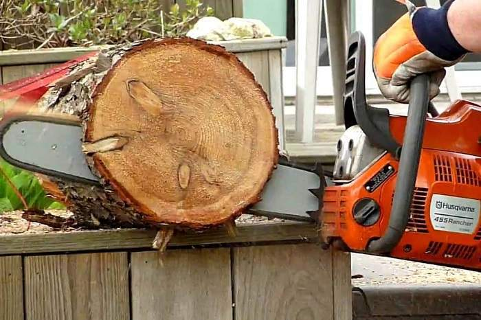 How to Buy the Best 20-Inch Chainsaw