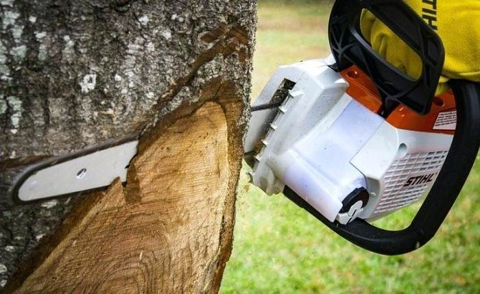 How to Buy the Best Chainsaw Bar