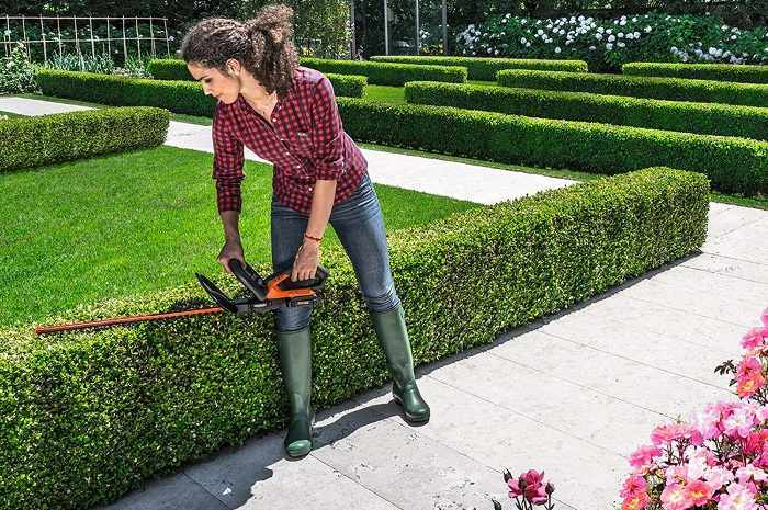 How to Buy the Best Electric Hedge Trimmer
