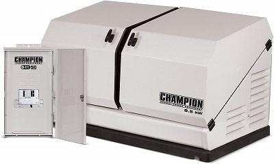 Champion 100177