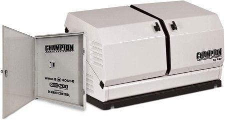 Champion 100294