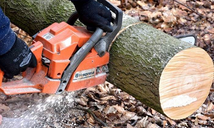 How to Buy the Best Husqvarna Chainsaw