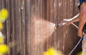Best Stain Sprayer