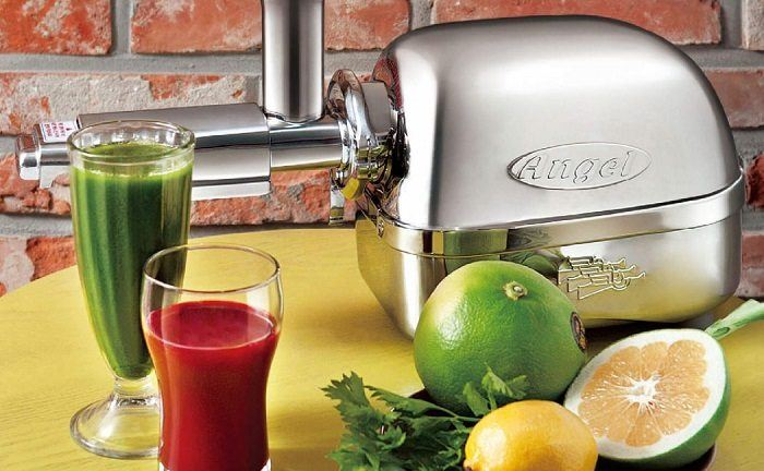 How to Buy the Best Twin Gear Juicer
