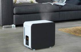 Best Steam Humidifier