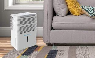 Best 30-Pint Dehumidifier