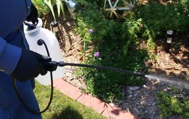 How to Buy the Best Garden Sprayers