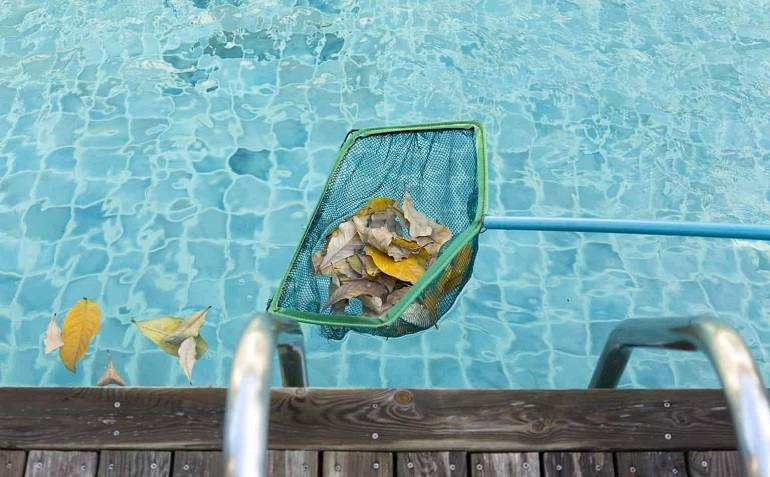 How to Prevent Water Bugs in Pools