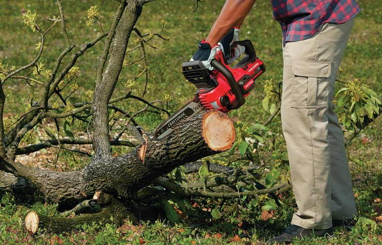 How to Buy the Best Top Handle Chainsaws